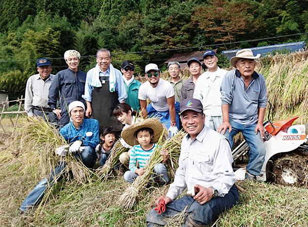 坪沼でよしもと芸人と古代米刈り取りの手伝い