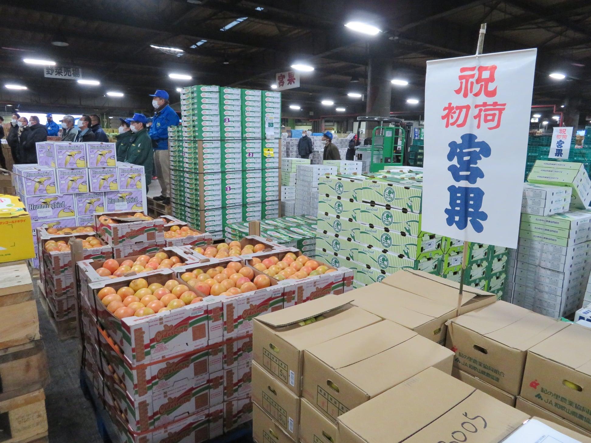 仙台市中央卸売市場業務開始式(水産物部、青果部、関連事業者)に出席いたしました。